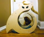 The best cat scratcher in the world